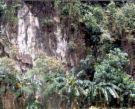 cave of Pilar